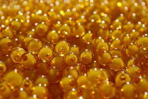 تولید خاویار طلایی