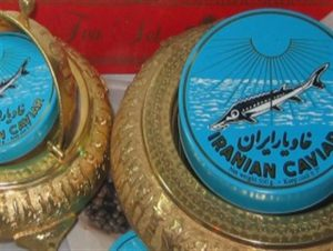 تولید کننده خاویار ایرانی